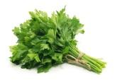 lifespa-image-fresh-parsley-leaves